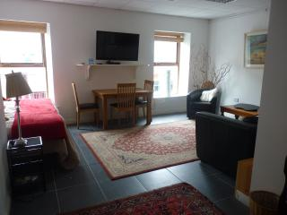 Sligo Town Property Rental Apartment - Sligo vacation rentals