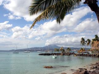 MARTINIQUE:Nice apartment 50 meters from the beach - Trois-Ilets vacation rentals