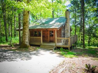Dancing Bear - Onsite hiking trails and FREE POOL. - Townsend vacation rentals