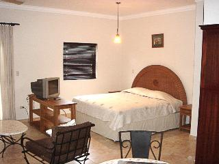 Simple, yet everything you need! - OD1106 - Cabarete vacation rentals