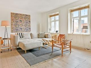 Large and bright Copenhagen apartment near Nyhavn - Copenhagen vacation rentals