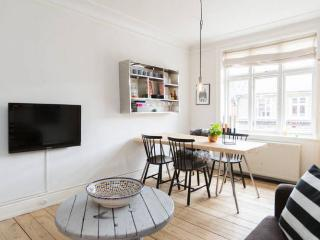 Lovely Copenhagen apartment at Vesterbro - Copenhagen vacation rentals