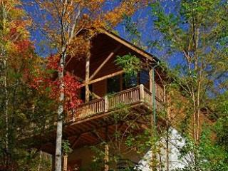 Secluded Romance a one bedroom Pigeon Forge cabin. - Tennessee vacation rentals