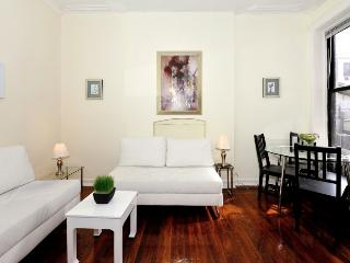 Fantastic Central Park One Bedroom!!!!! - New York City vacation rentals