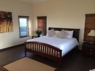 Luxurious and Spacious Townhouse near the Beaches - Saint George vacation rentals