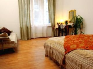 Metropol apartment - Serbia vacation rentals