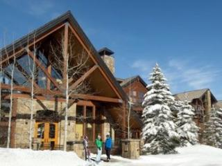 Bear Creek Lodge 311 ~ RA1665 - Mountain Village vacation rentals