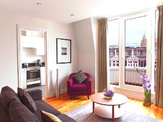 Newly refurbished 2 bedroom apartment - London vacation rentals