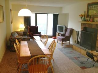 Mountain Green Unit 1-D2 - Killington vacation rentals