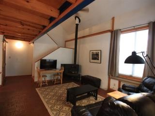 Fabulous loft.  Minutes to Bragg. Heart of Fay - Fayetteville vacation rentals