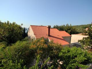 Charming Dalmatian Villa ( Apartment to rent) - Zaton vacation rentals