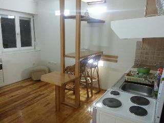 App in center (SFF red carpet area) - Sarajevo vacation rentals