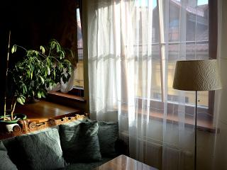 Exclusive design flat in Old Town - Lithuania vacation rentals