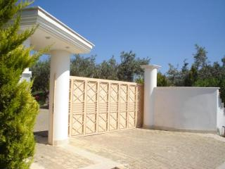 Athens 4 bedroom beach area luxury country villa - East Attica Region vacation rentals
