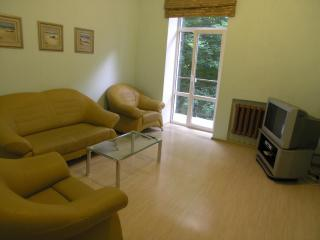 Three room apartment on Independence square - Kiev vacation rentals