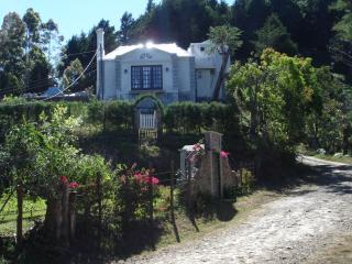 Costa Rica's only Mountain Renaissance Castle - Central Valley vacation rentals