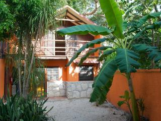 Casa Mango - Estado de Mexico vacation rentals