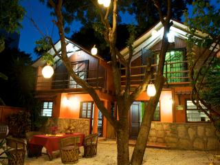 Casa Pitaya - Estado de Mexico vacation rentals