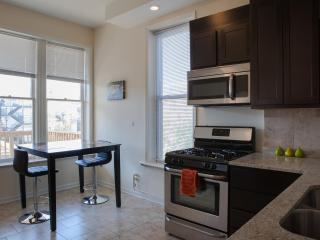 3 Bedroom in Wrigleyville!!!! - Chicago vacation rentals