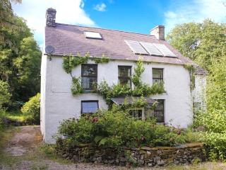 CWM HOWNI, ground floor shower, Rayburn range and woodburner, WiFi, spacious accommodation, enclosed garden, near Aberporth, Ref - Aberporth vacation rentals