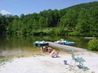 Log Cabin, Lake, Fishing, Paddle Boats, Swiming - Saluda vacation rentals