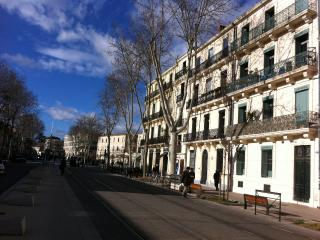L'appart En Ville - A Hight Level Accommodation In Montpellier City Center - Montpellier vacation rentals