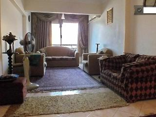 Cairo... Fully Furnished Apartment - Cairo vacation rentals