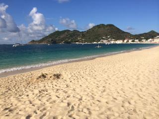 Honeymoon . Grand Case Beach Condo Feet In Water - Saint Martin-Sint Maarten vacation rentals