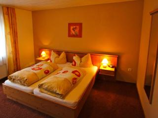 Vacation Apartment in Zwiesel - 215 sqft, balcony, sauna, use of fitness center included (# 1158) - Zwiesel vacation rentals
