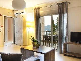 Eucalyptus Apartments - Meli - Cephalonia vacation rentals