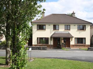 Spacious house close to the city - Galway vacation rentals