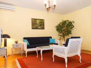 Spacious, quiet & quiet - Serbia vacation rentals