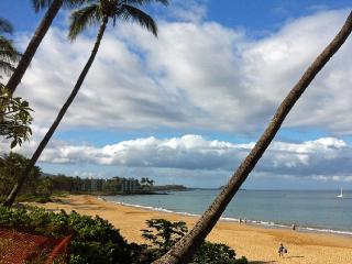 Special Price! Downtown, Walk To Beach, Ocean View - Kihei vacation rentals