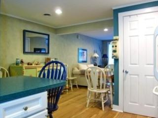 Quaint Cozy clean condo in beautiful Manchester Vt - Manchester vacation rentals