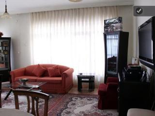 At the center of Ankara (embassy) - Central Anatolia vacation rentals