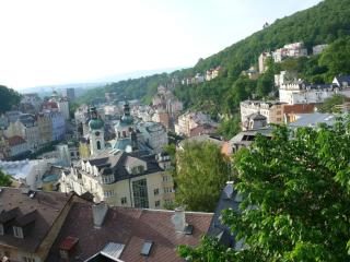 Karlovy Vary the apartment with a beautiful view - Karlovy Vary vacation rentals
