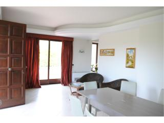 Villa Lavina (Etna & Sea) btw Catania and Taormina - Trecastagni vacation rentals