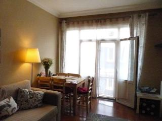 COSY AND FANCY FLAT CLOSE TO TAKSİM - Istanbul & Marmara vacation rentals