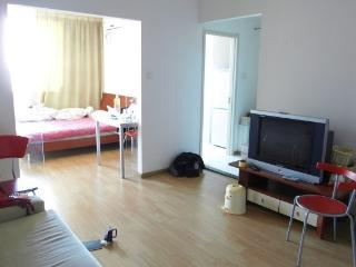 Wudaokou 1 br apartment. Blcu Tsinghua,Peking. - Beijing vacation rentals