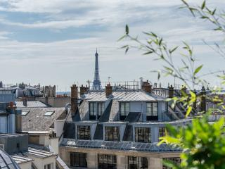 Apt with Rooftop Terrace Overlooking Eiffel Tower - Paris vacation rentals