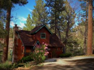 Primrose Place: Authentic Cabin w/ Spa Near Bear Mountain - Big Bear Lake vacation rentals