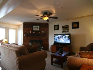 Best Value on the MTN Summit Condo New Remodel!!! - Snowshoe vacation rentals