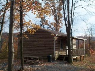 Cabin rentals in the woods near Raystown Lake - Allegheny Mountains vacation rentals