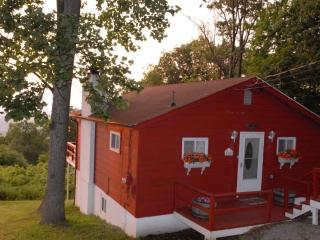 Mt TOP CABIN IN VIRGINIA WINE COUNTRY - Linden vacation rentals