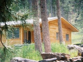 Black Hills Cabins near Mt. Rushmore, Crazy Horse - South Dakota vacation rentals