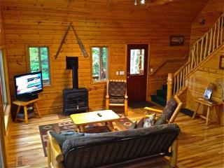 Open All Year*PontoonBoat*WaterTrampoline*Gameroom - Traverse City vacation rentals