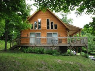 Beautiful, Bright Log Cabin on 90 acres - Central Vermont vacation rentals