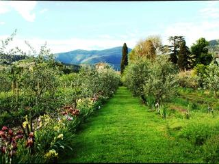 luxury farm apartments historic Tuscany Villas - Tuscany vacation rentals