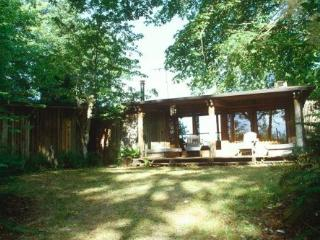 South Puget Sound cabin with beautiful views - Lakebay vacation rentals