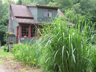 Charming brookside Catskills getaway! - Margaretville vacation rentals